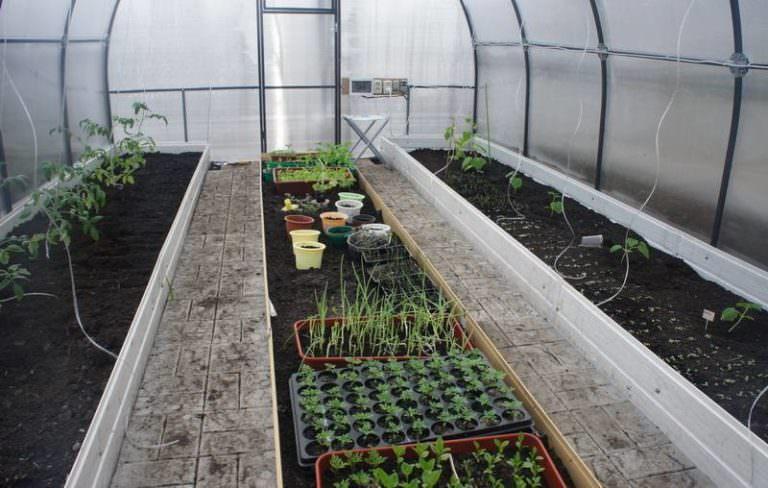 подготовка грядок под помидоры весной