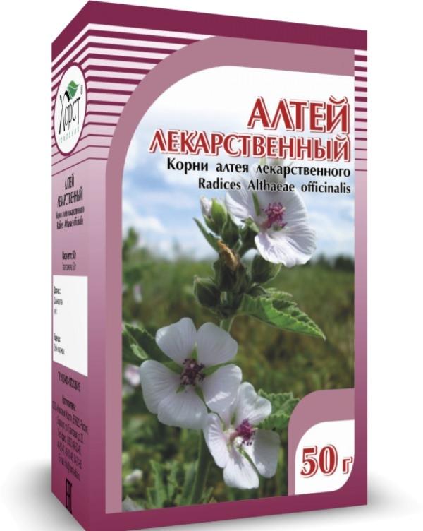 Лечимся травами - алтей лекарственный