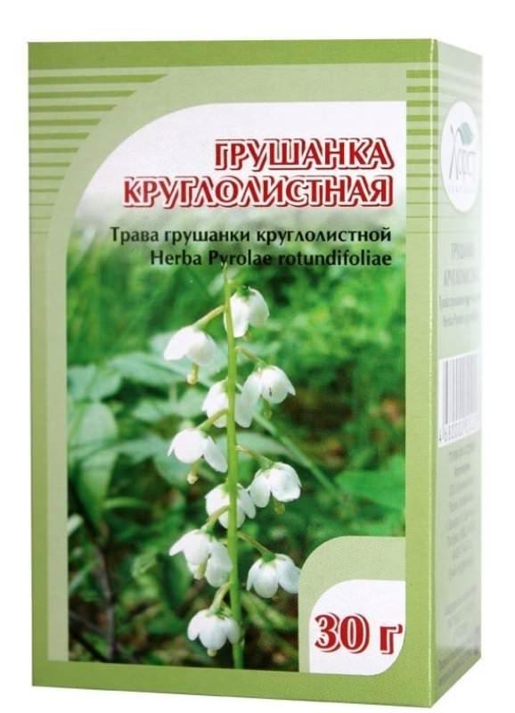 Полезные свойства растения грушанка