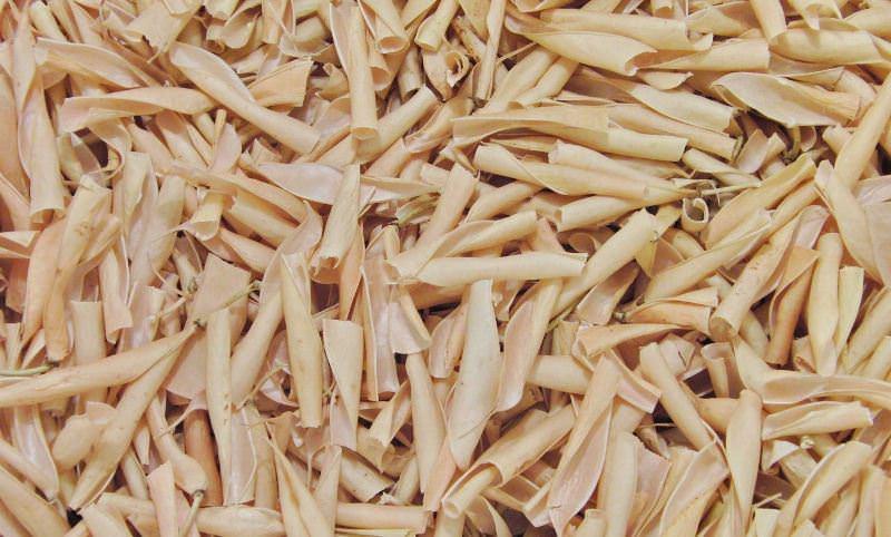 Сушеные створки фасоли: полезные свойства и противопоказания
