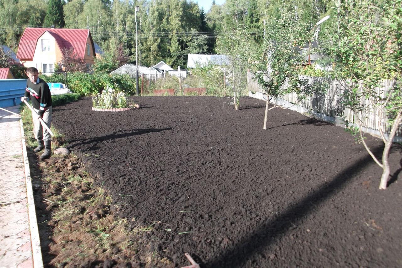 Как я всего за неделю сделал почву на огороде рыхлой
