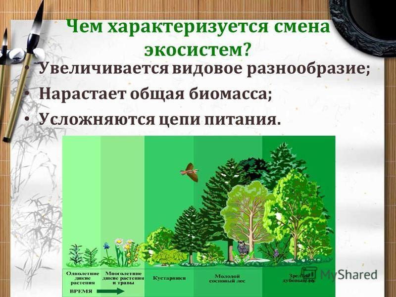 Устойчивость и смена экосистем